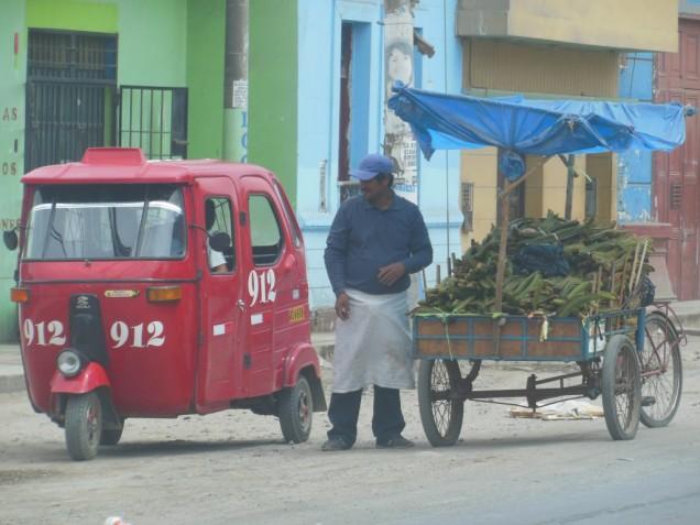 DSCN3637 10-08 vente gousses huacho.jpg