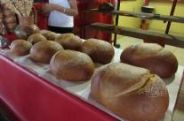 IMG_2645 pains de tulé